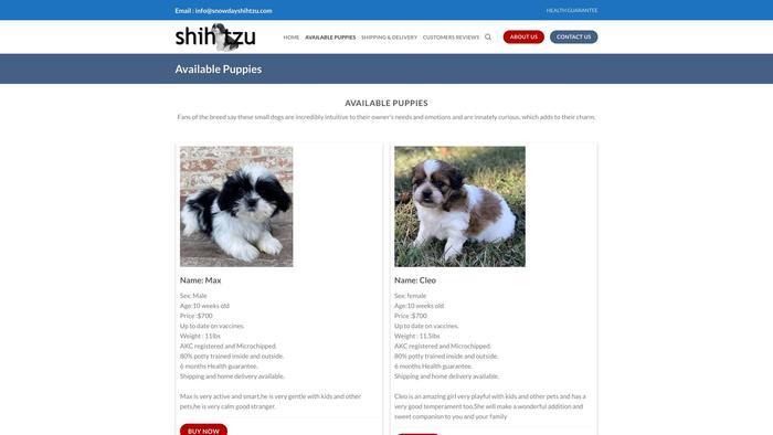 Snowdayshihtzu.com - Shihtzu Puppy Scam Review