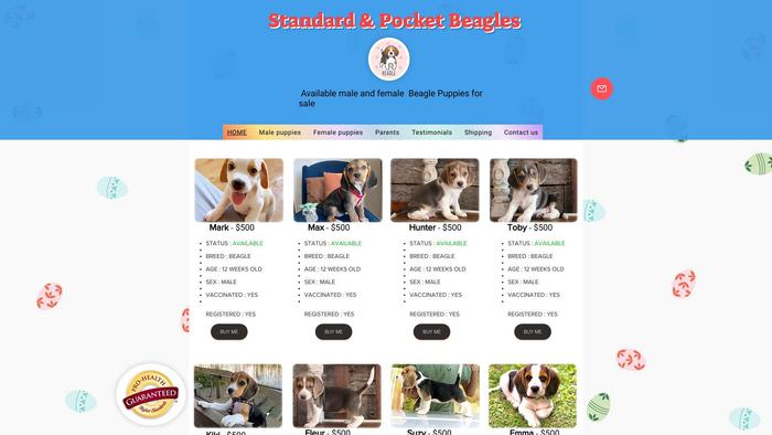 Standardrunners.com - Beagle Puppy Scam Review