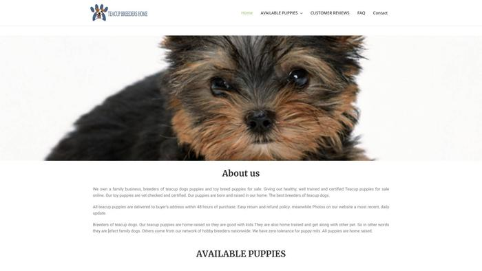 Antonioteacuphome.net - Yorkshire Terrier Puppy Scam Review