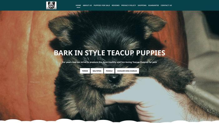 Barkinstylehouse.com - Yorkshire Terrier Puppy Scam Review