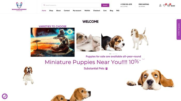 Beaglepuppiesshop.com - Beagle Puppy Scam Review