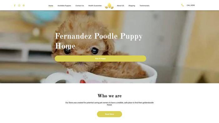Fernpoodle.com - Poodle Puppy Scam Review