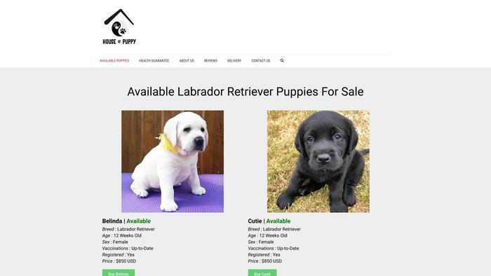Houseofexoticspets.com - Labrador Puppy Scam Review