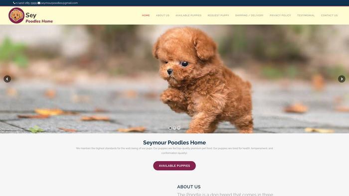 Seymourpoodles.com - Poodle Puppy Scam Review