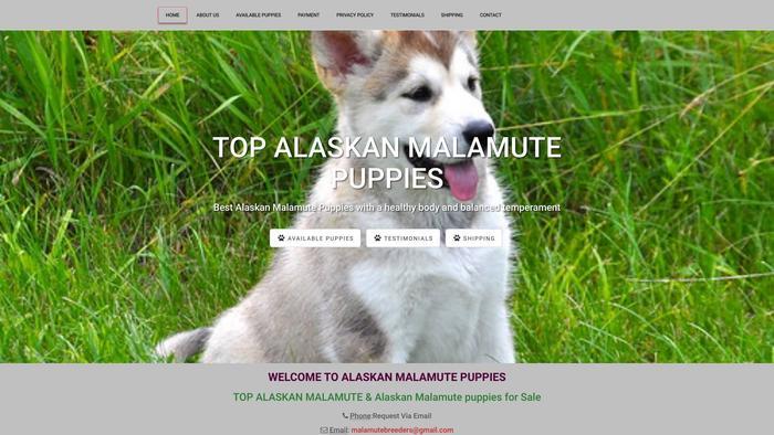 Topalaskanmalamutebreeders.com - Malamute Puppy Scam Review