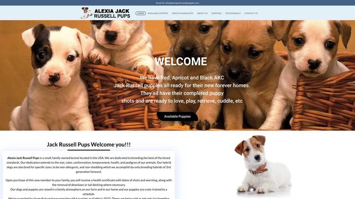 Alexiajackrussellpups.com - Jack Russell Terrier Puppy Scam Review