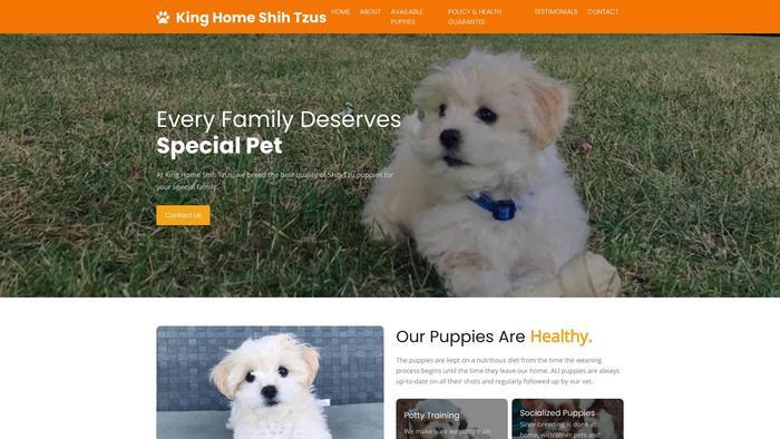 Kinghomeshihtzus.info - Shihtzu Puppy Scam Review