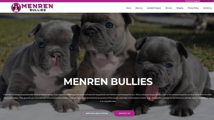 Menrenbullies.com - English Bulldog Puppy Scam Review