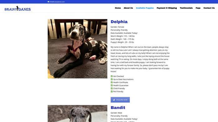 Brainydanes.com - Great Dane Puppy Scam Review
