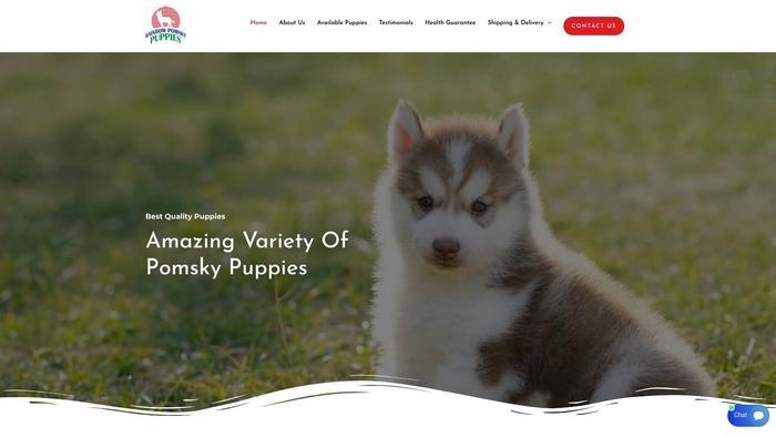 Rainbowpomsky.com - Pomeranian Puppy Scam Review