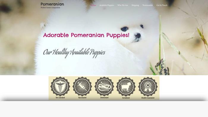 Zpomeranian.com - Pomeranian Puppy Scam Review