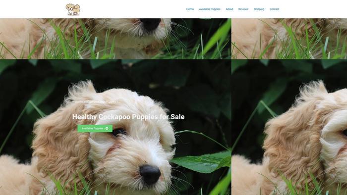 Cutecockapoo.com - Cockapoo Puppy Scam Review