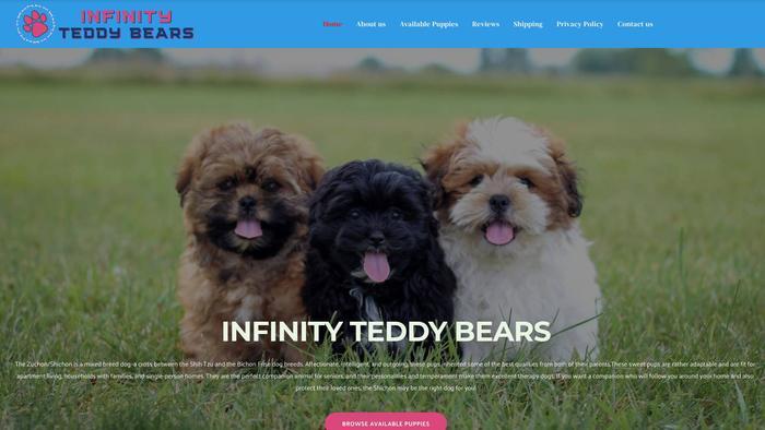 Infinityteddybears.com - Shichon Puppy Scam Review