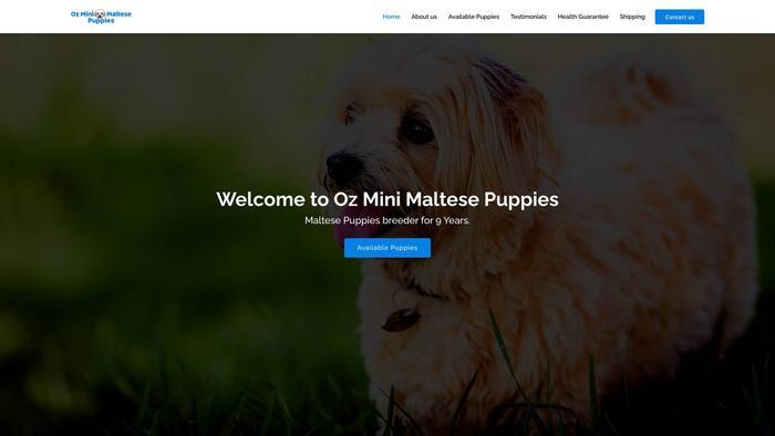 Ozminimaltesepuppies.com - Maltese Puppy Scam Review