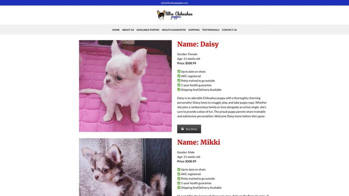 Ultrachihuahuapuppies.com - Chihuahua Puppy Scam Review