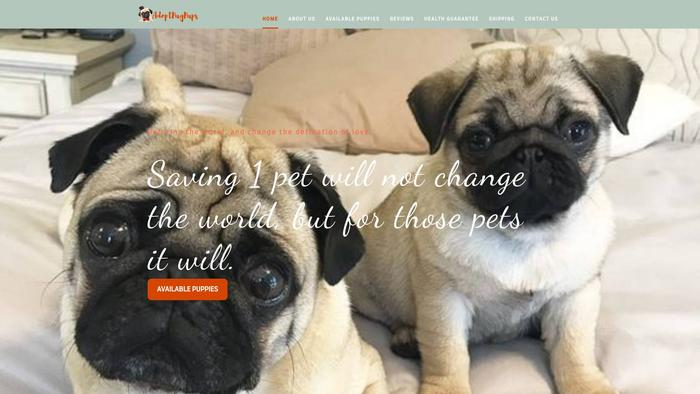 Adoptpugpups.com - Pug Puppy Scam Review