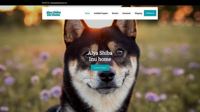 Alyashibainuhome.com - Shibhainu Puppy Scam Review