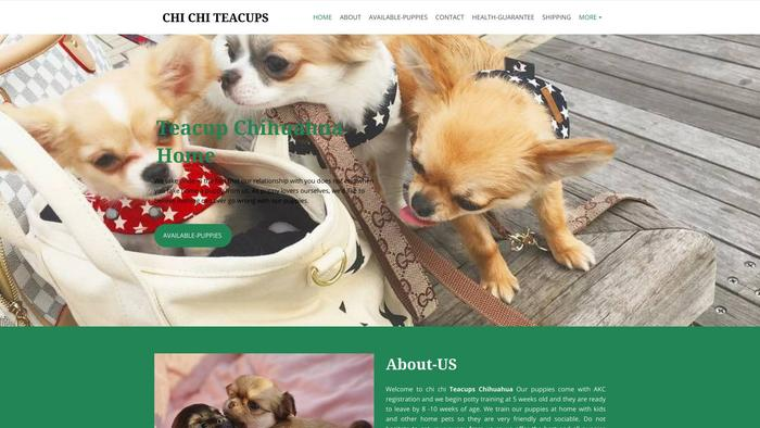 Chichicteacupchihuahuahome.com - Chihuahua Puppy Scam Review