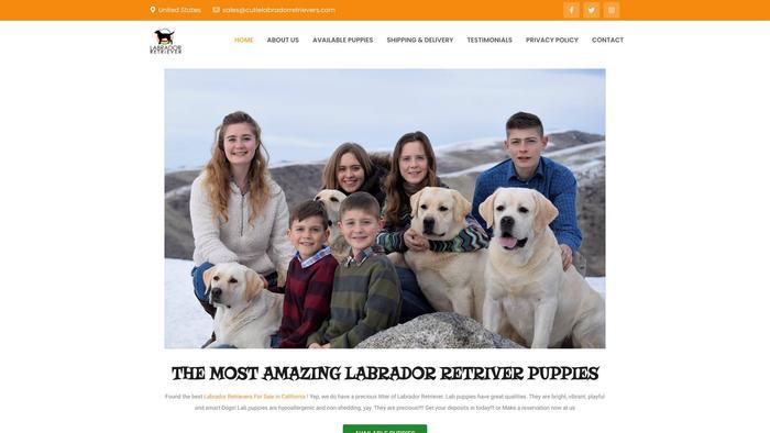 Cutielabradorretrievers.com - Golden Retriever Puppy Scam Review