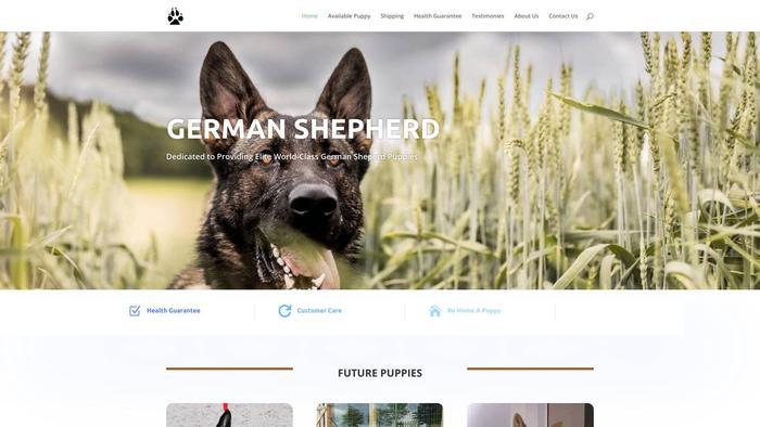 Germshepherdsplace.com - Germanshepherd Puppy Scam Review