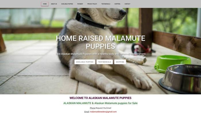 Homeraisedmalamutes.com - Malamute Puppy Scam Review
