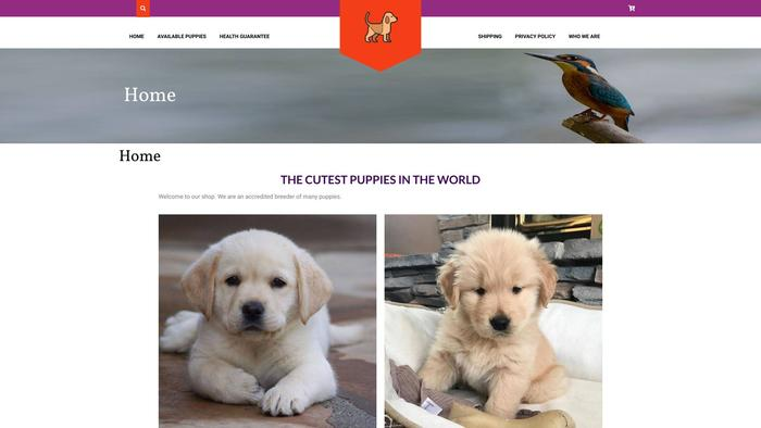 Manypuppies.com - Golden Retriever Puppy Scam Review