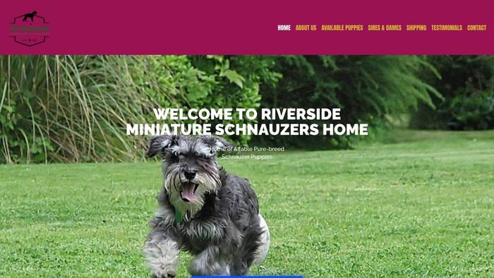 Riversideminischnauzers.com - Schnauzer Puppy Scam Review