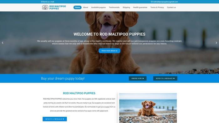 Rodmaltipoopuppies.com - Maltipoo Puppy Scam Review