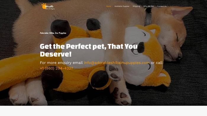 Adorableshibainupuppies.com - Shibhainu Puppy Scam Review