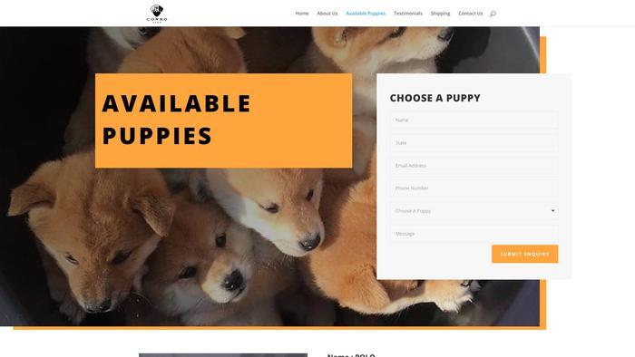 Ashleyshibainupuppies.com - Shibhainu Puppy Scam Review