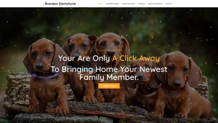 Brandondachshund.com - Dachshund Puppy Scam Review