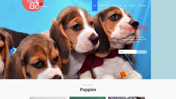 Briannasuttonbeagleshomes.com - Beagle Puppy Scam Review
