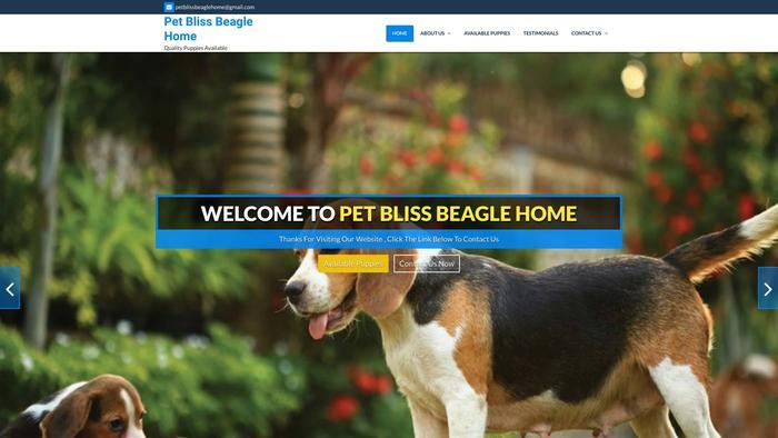 Petblissbeaglehome.com - Beagle Puppy Scam Review