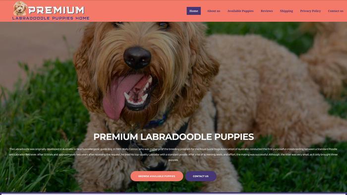 Premiumlabradoodle.com - Labradoodle Puppy Scam Review