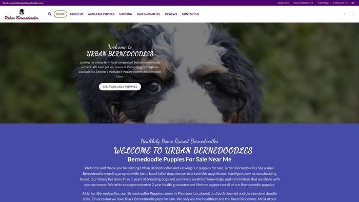 Urbanbernedoodles.com - Bernedoodle Puppy Scam Review