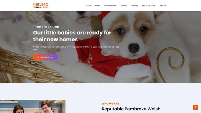 Alverocorgispuppies.com - Corgi Puppy Scam Review