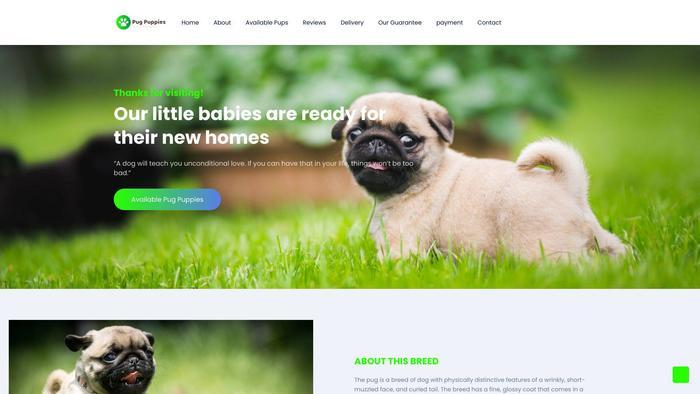 Amazingpugpuppiesforsale.com - Pug Puppy Scam Review