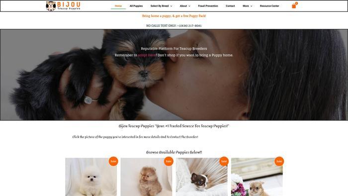 Bijouteacuppuppies.com - Yorkshire Terrier Puppy Scam Review