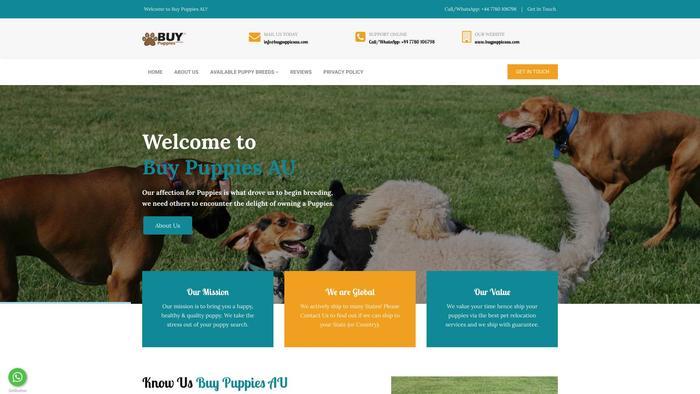 Buypuppiesau.com - Pug Puppy Scam Review