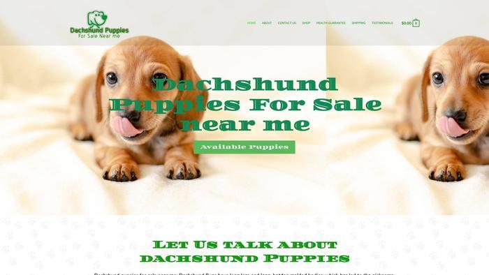 Dachshundpuppiesforsalenearme.com - Dachshund Puppy Scam Review