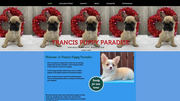 Francispuppiesparadise.com - French Bulldog Puppy Scam Review