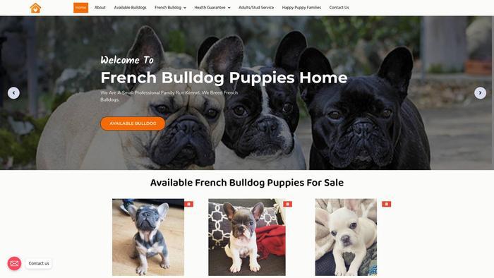 Homeofbernedoodles.com - Bernedoodle Puppy Scam Review