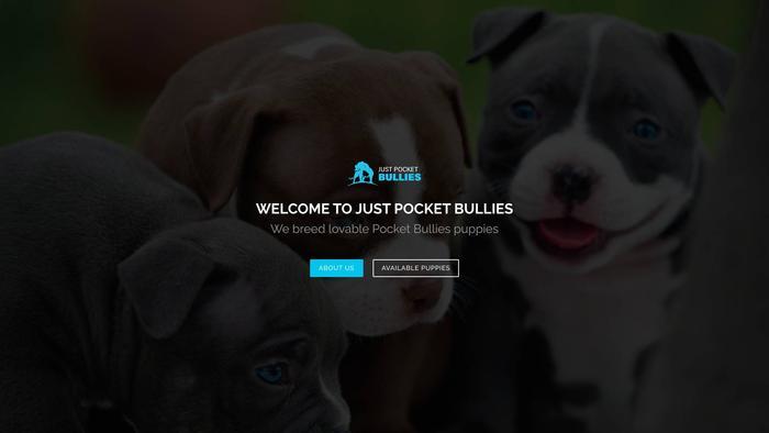 Justpocketbullies.com - Bulldog Puppy Scam Review