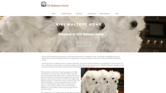 Kikimaltesehome.com - Maltese Puppy Scam Review