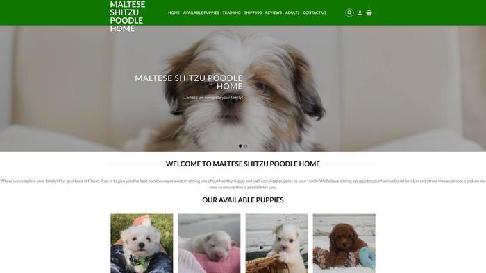 Malteseshitzupoodlehome.com - Maltese Puppy Scam Review