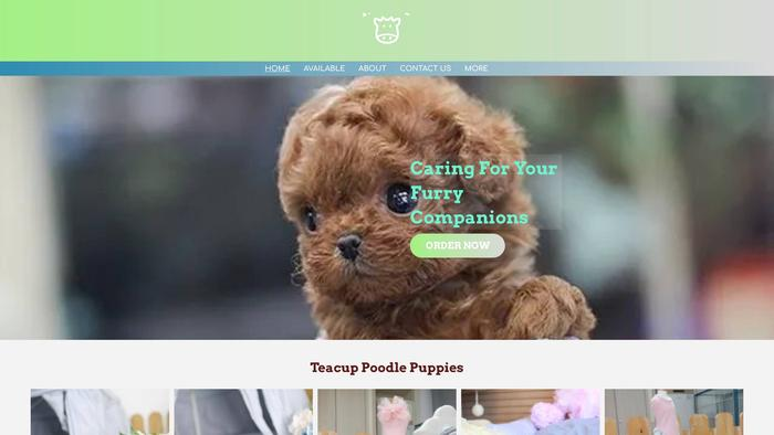 Willsteacuppoodleworld.com - Poodle Puppy Scam Review