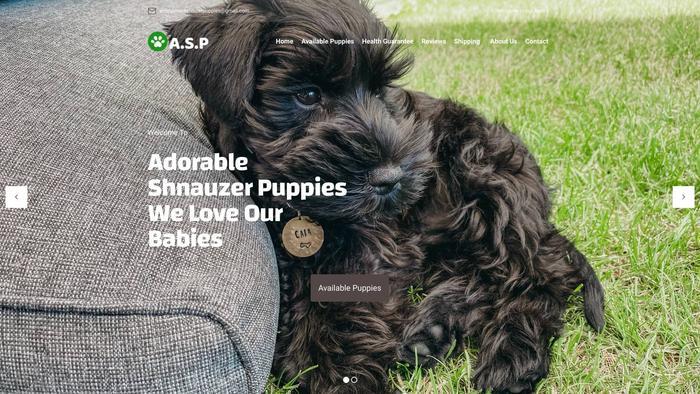 Adorableshnauzerpuppies.com - Schnauzer Puppy Scam Review