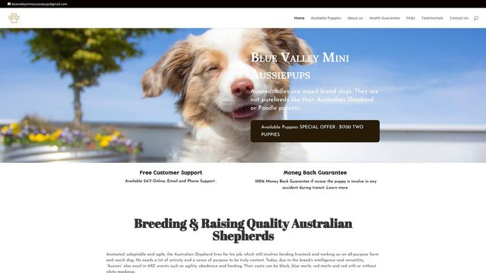 Bluevalleyminisaussiepups.com - Australian Shepherd Puppy Scam Review