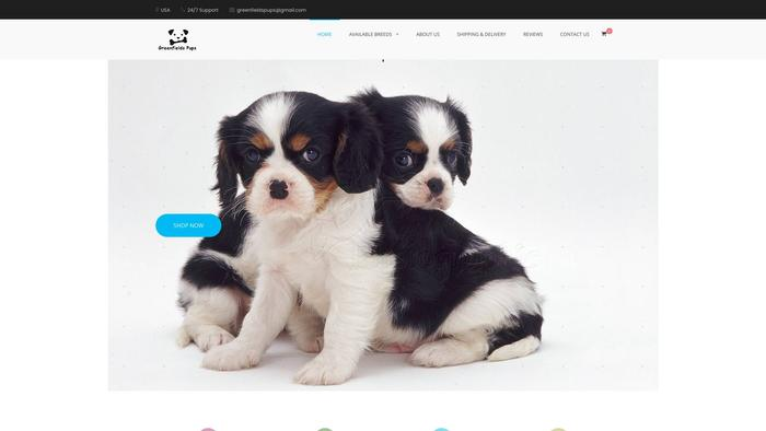 Greenfieldspups.com - Cavalier King Charles Spaniel Puppy Scam Review