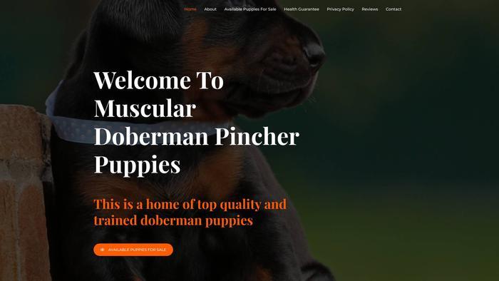 Musculardobermanpinscherpuppies.com - Doberman Pinscher Puppy Scam Review
